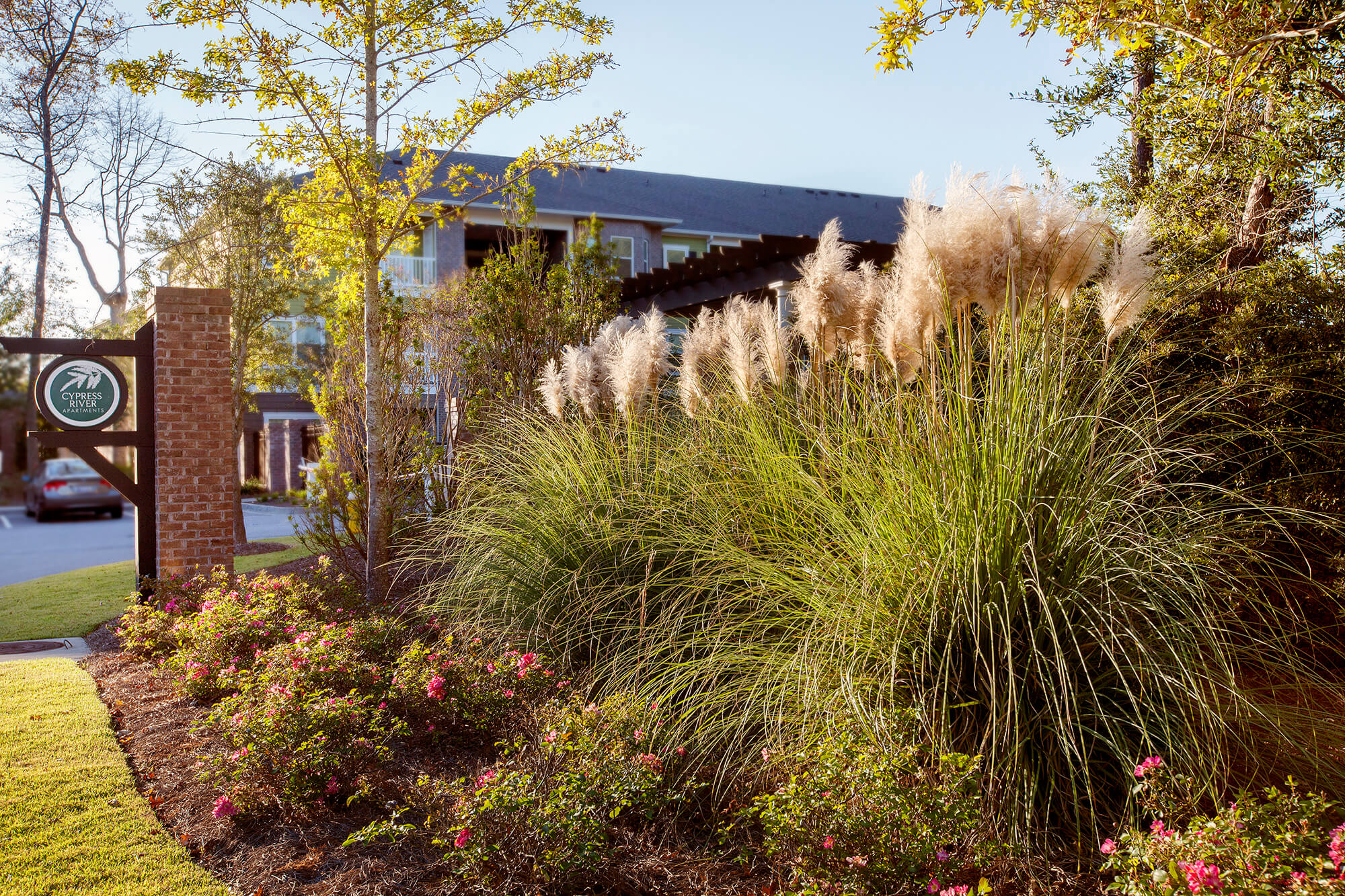 Cypress River Apartments   Outdoor Spatial Design